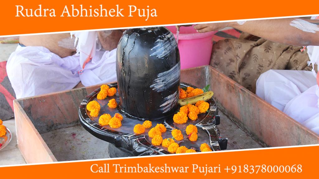 Rudra Abhishek Puja Trimbakeshwar Pandit