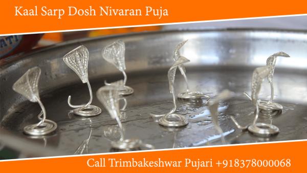 Kaal Sarp Dosh Nivaran Puja in Trimbakeshwar