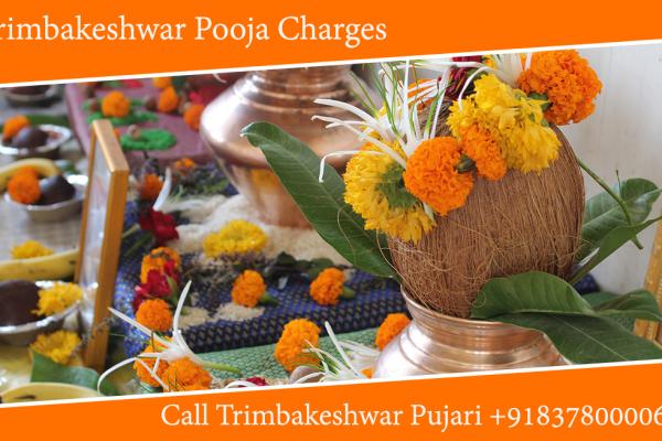 Trimbakeshwar Pooja Charges