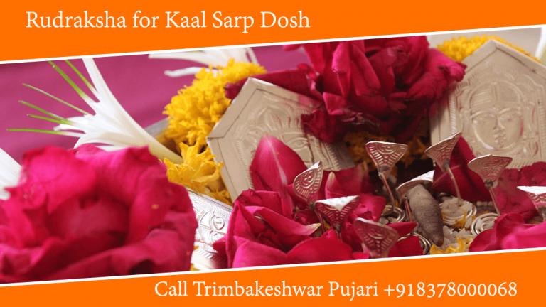 Rudraksha for Kaal Sarp Dosh