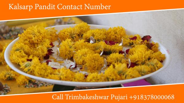 Kalsarp Pandit Contact Number