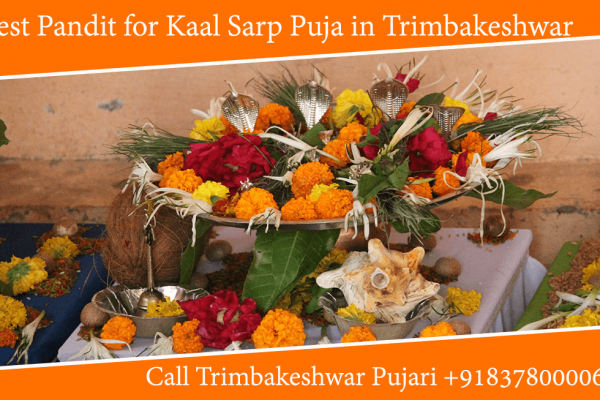 Best Pandit for Kaalsarp Puja in Trimbakeshwar