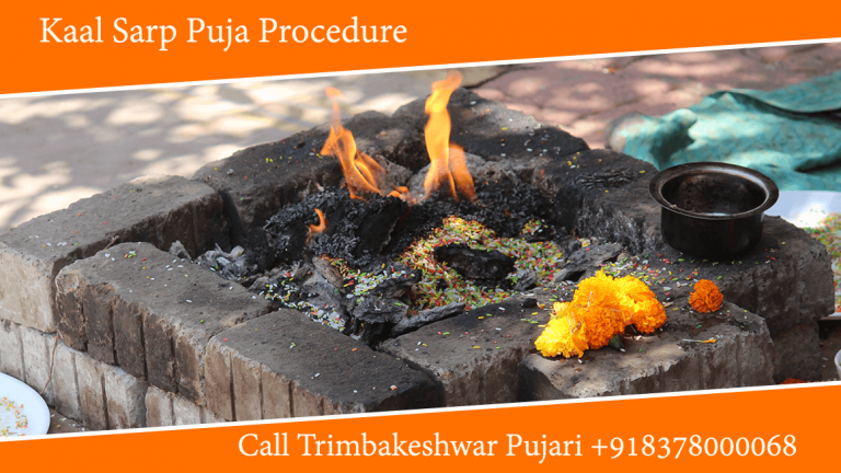 Kaal Sarp Puja Procedure